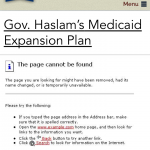 Haslam Medicaid Plan